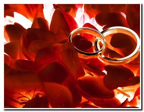 https://serpantinidey.ru/розовая свадьба